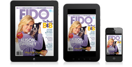 FIDO Friendly MobileMobile