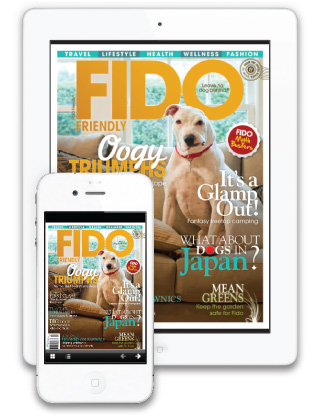 FIDO Friendly Mobile