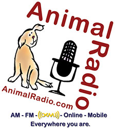 Animal Radio sponsors Get Your Licks on Route 66