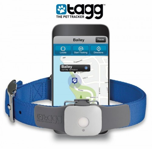 GPS and Activity Pet Tracker
