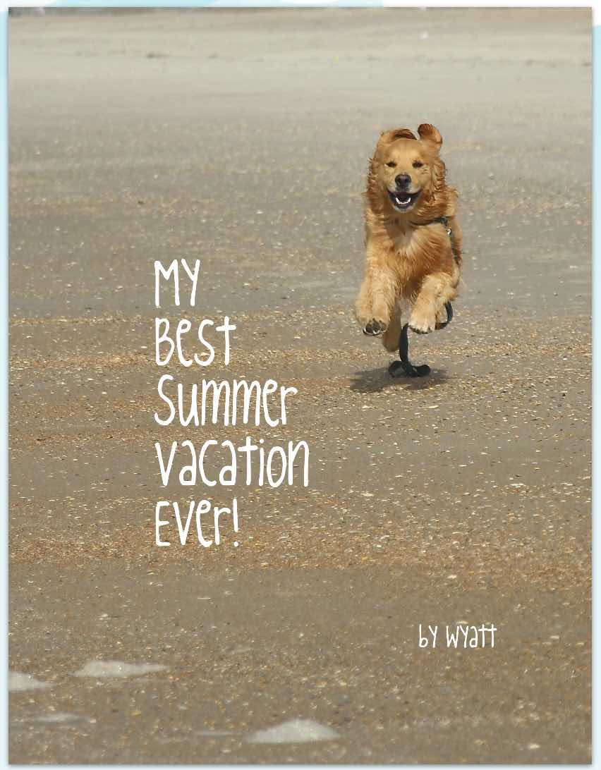 how i spent my summer vacation essay winner 13 fido friendly my is wyatt and i want to tell you about my most awesome family vacation ever