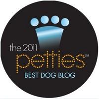 2011 Petis Best Dog Blog