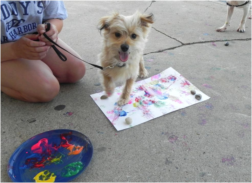 Can dogs paint paws ready set and go doggy painting for Painting of your dog