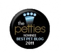 DogTime Petties Best Overall Pet Blog