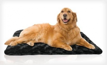Premium Orthopedic Pet Mat
