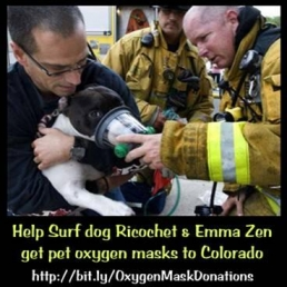 Urgent help needed for dogs in the Colorado wild fires